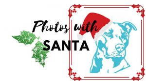 Photos with Santa Paws @ Kriser's Natural Pet Store | San Antonio | Texas | United States