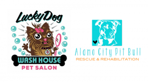 Adoption Day at Lucky Dog Wash House @ Lucky Dog Wash House