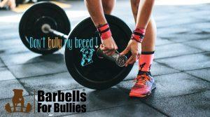 Barbells for Bullies @ CrossFit Unshaken